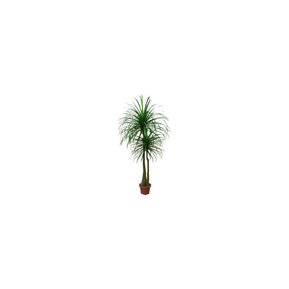 Umelý strom - Dracéna