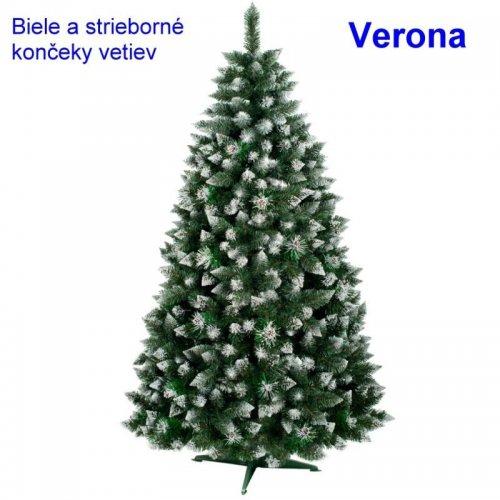 Sosna Verona - biele konce - 1,20cm