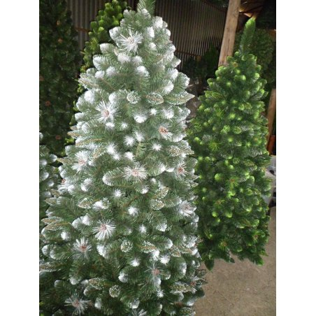 Sosna Verona - biele konce - 150cm