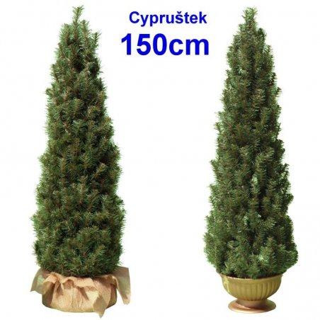 Cypruštek