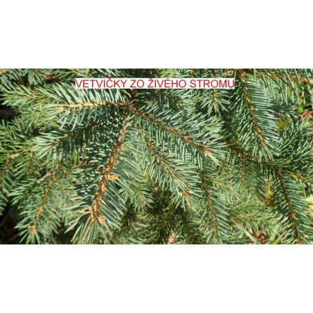 Vianočný stromček - Jedľa EXCLUSIV 240 cm