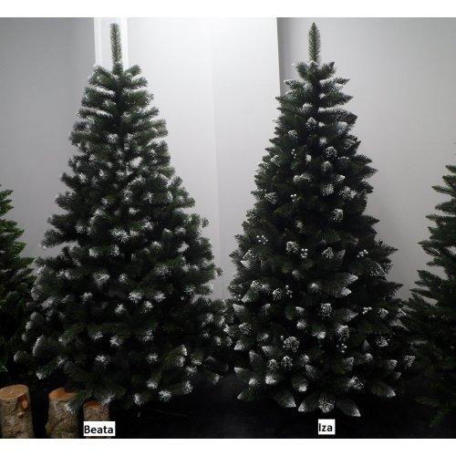 Vianočný stromček Borovica...