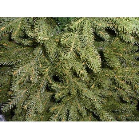 Vianočný stromček - Jedľa 3D EXCLUSIV 120 cm